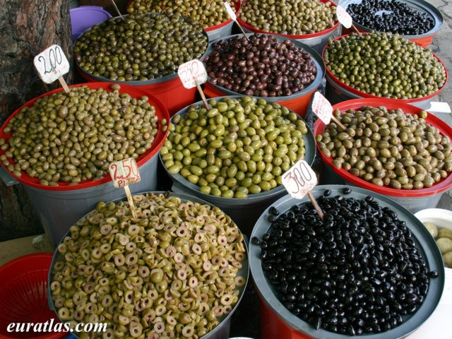 Click to download the Olive Merchant