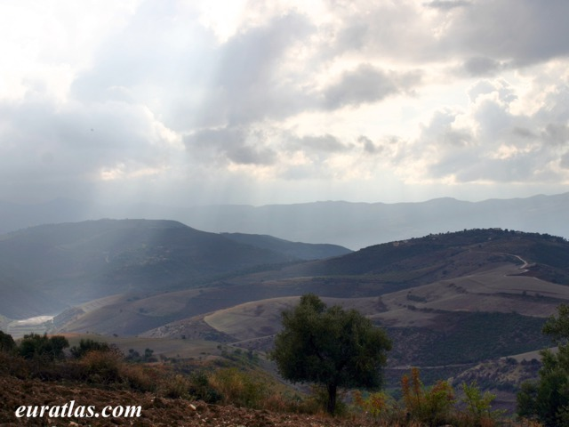 Click to download the Countryside near Fier